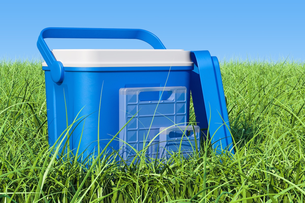 Top 5 Best Igloo Coolers