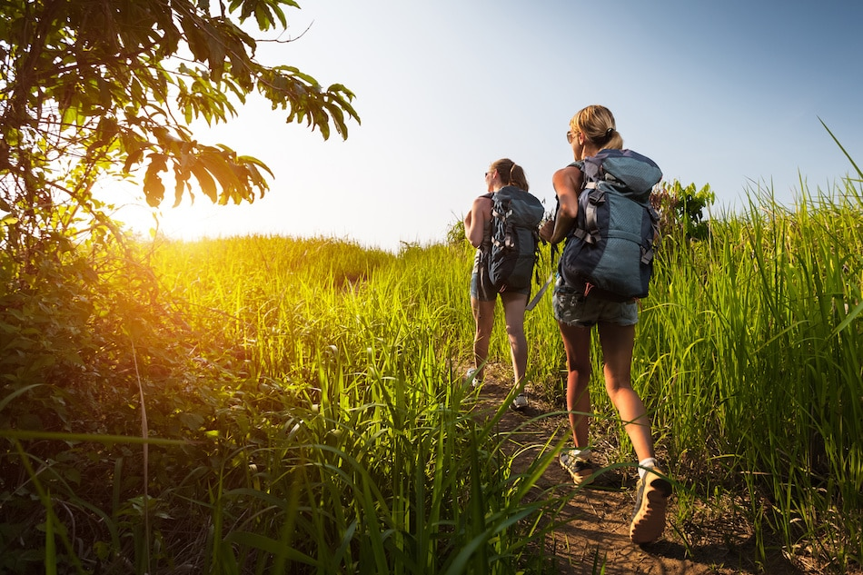 The Ultimate Hiking Guide for Beginner Hikers
