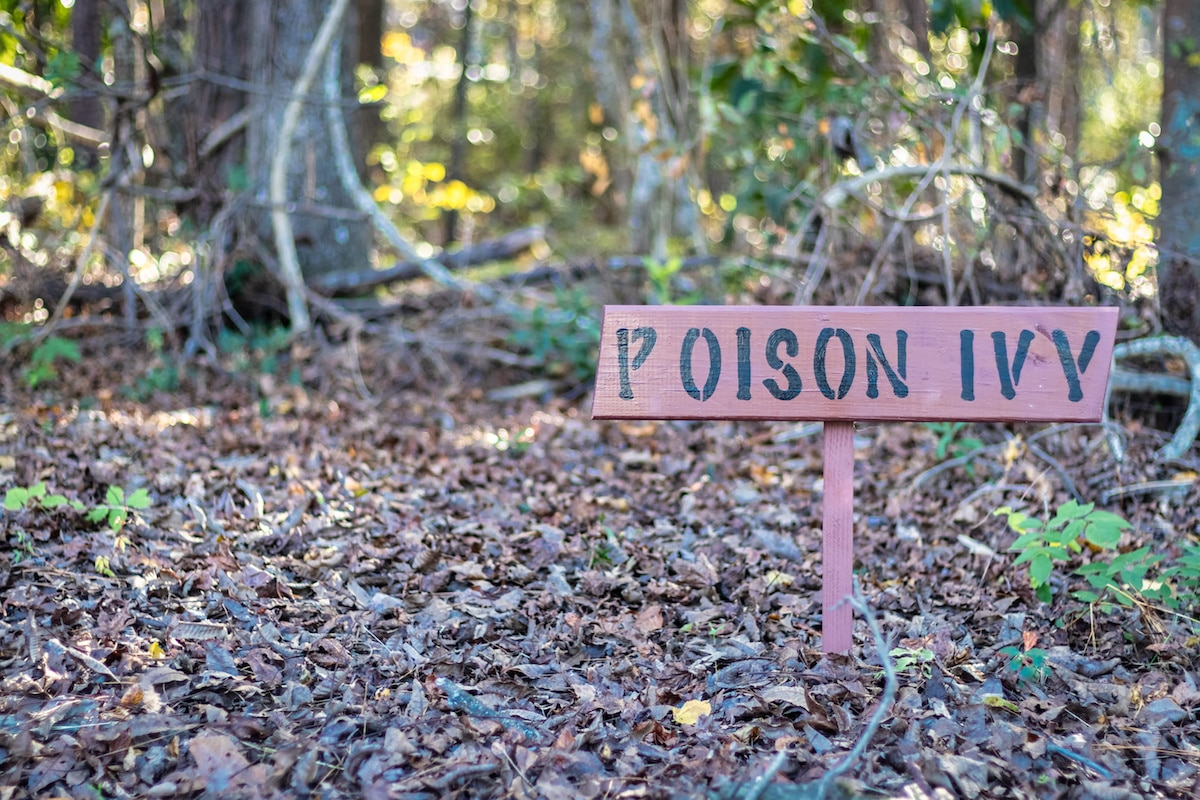 Poison Ivy Prevention & Treatment: How to Stay Safe When Encountering Poison Ivy, Oak, & Sumac